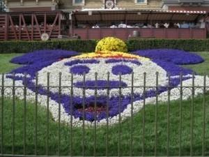 Disneyland flowers.preview