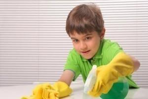 žepnina za gospodinjska opravila