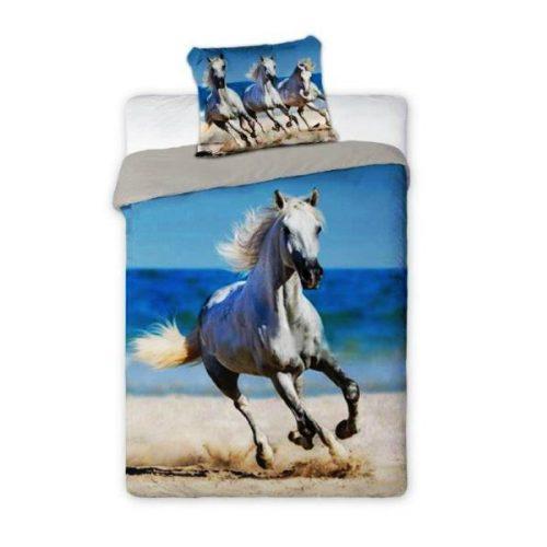 Konj beli na plaži p