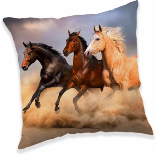 Blazina Konji c